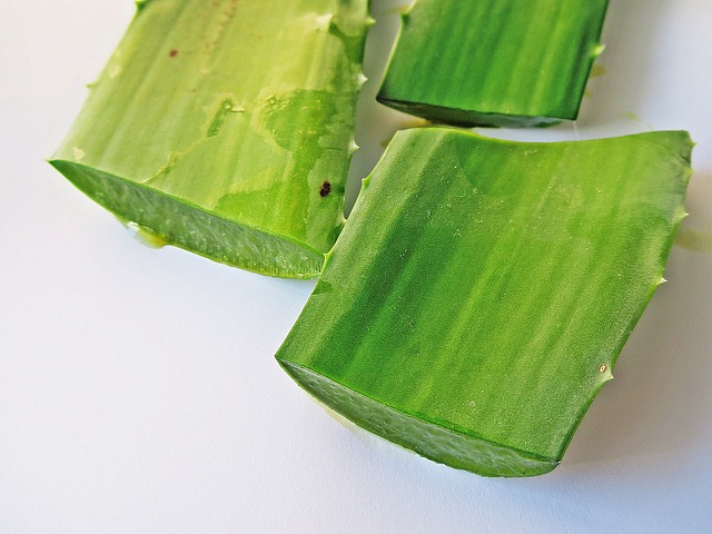 aloe-vera-treatment